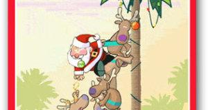 florida_christmas_30006