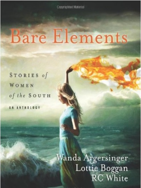 Bare Elements - Stories of Women of the South